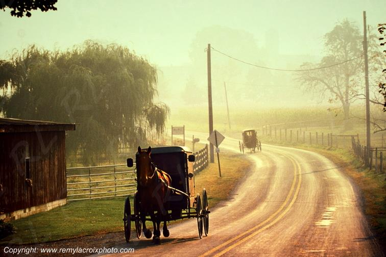 Lancaster Dutch County Amish Buggies Pennsylvania Pennsylvanie USA ww.remylacroixphoto.com
