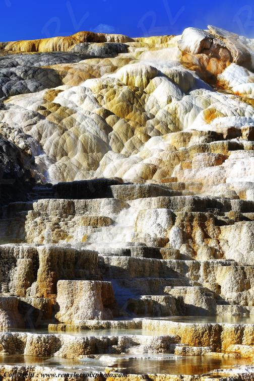 Mammoth Hot Springs,Yellowstone Nat'l Park,Wyoming,USA