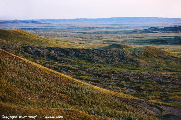 Grasslands National Park West,Saskatchewan,Canada