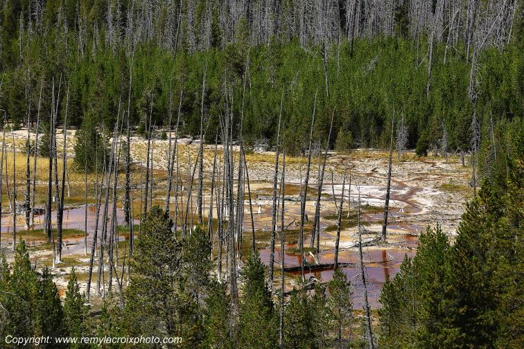 Artist's Paint Pots,Yellowstone Nat'l Park,Wyoming,USA
