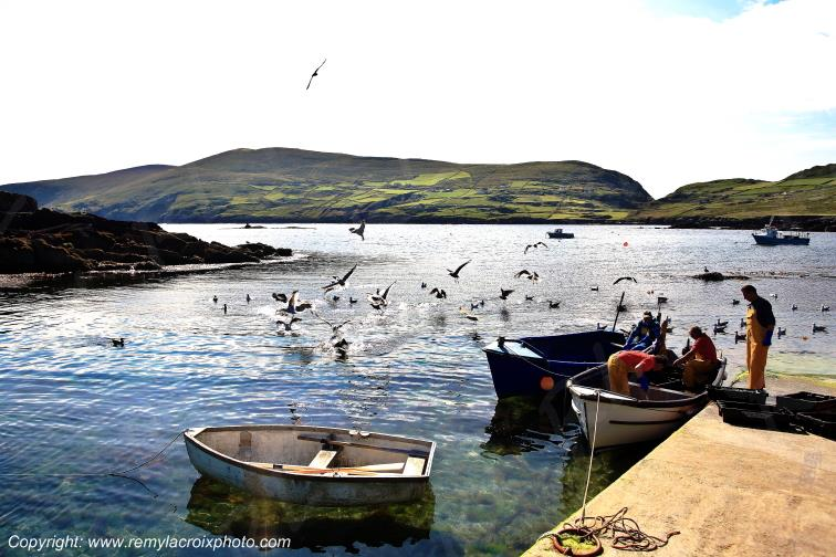 Beara Garnish Point Cork Irlande Ireland www.remylacroixphoto.com