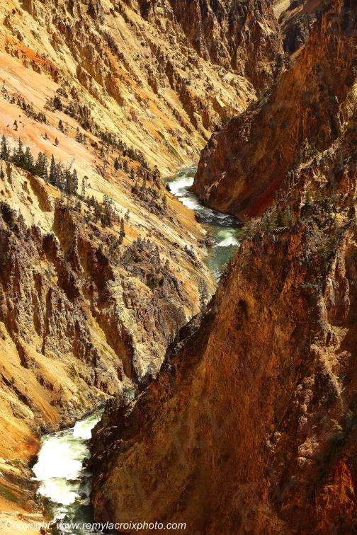 Grand Canyon de Yellowstone Nat'l Park,Wyoming,USA