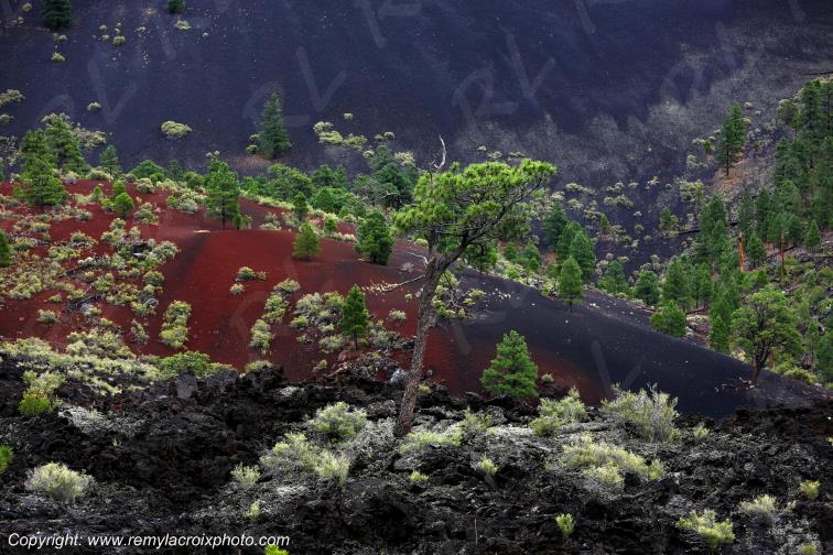 Sunset Crater National Monument,Arizona,USA