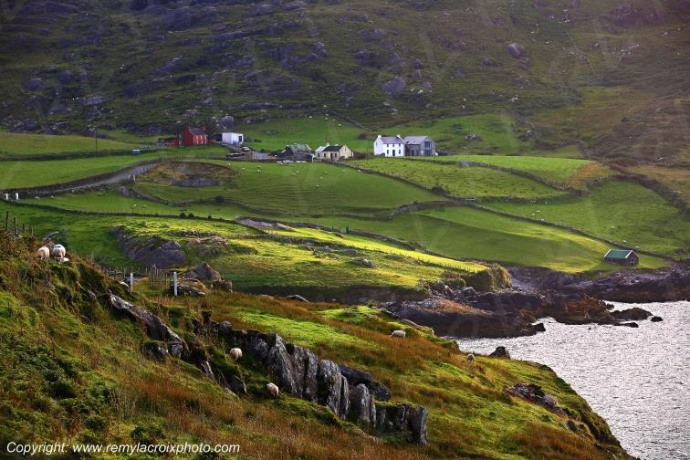 Péninsule de Beara Cod's Head Cork Irlande Ireland