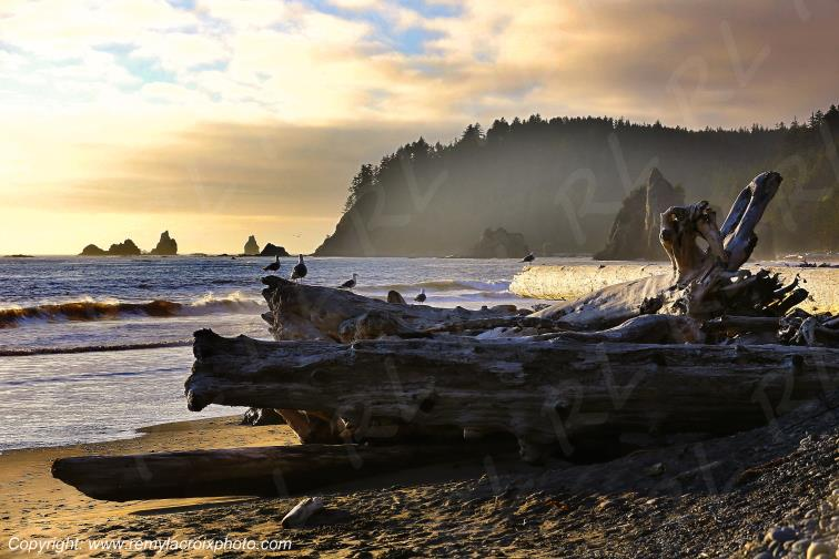 Rialto Beach Olympic National Park Washington USA www.remylacroixphoto.com