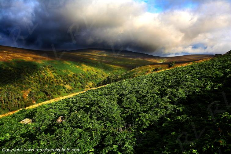 Wicklow Mountains Irlande Ireland www.remylacroixphoto.com