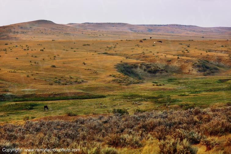 Custer Battlefield National Monument,Montana,USA